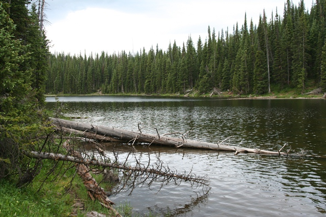 White river trappers lake fishing report for White river fishing